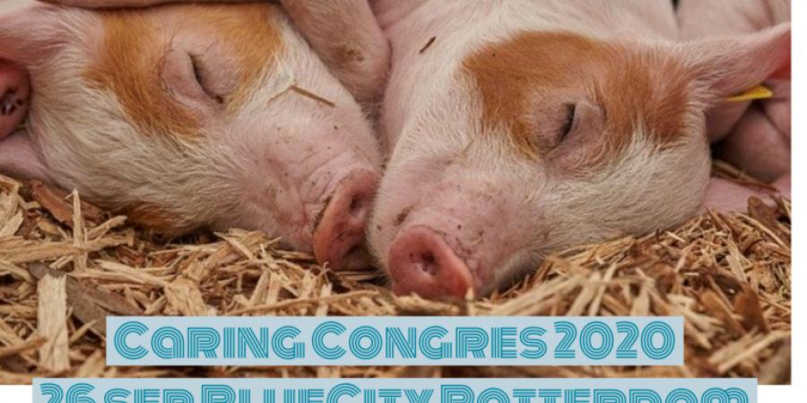caring congres