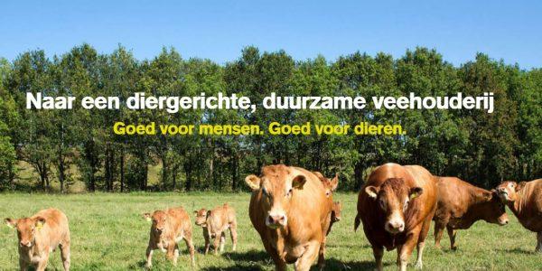 deltaplan veehouderij